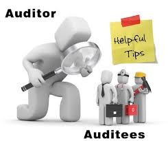 Auditor Auditee 022015